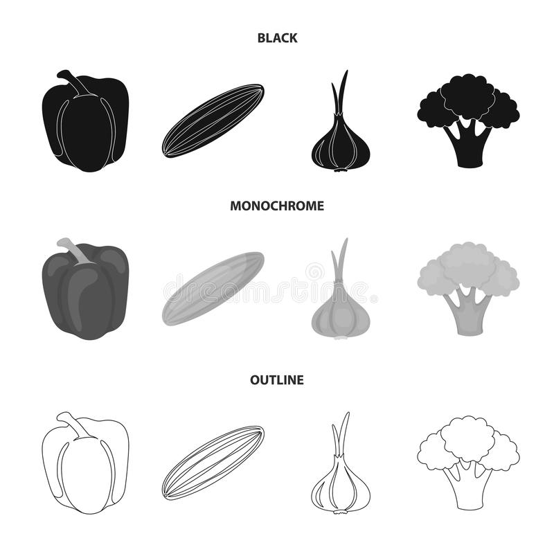 Red sweet pepper, green cucumber, garlic, cabbage. Vegetables set collection icons in black,monochrome,outline style. Vector symbol stock illustration stock illustration