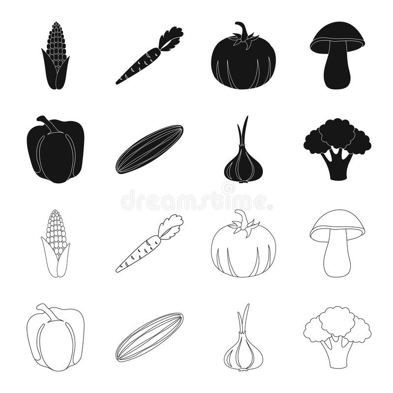 Red sweet pepper, green cucumber, garlic, cabbage. Vegetables set collection icons in black,outline style vector symbol. Stock illustration royalty free illustration