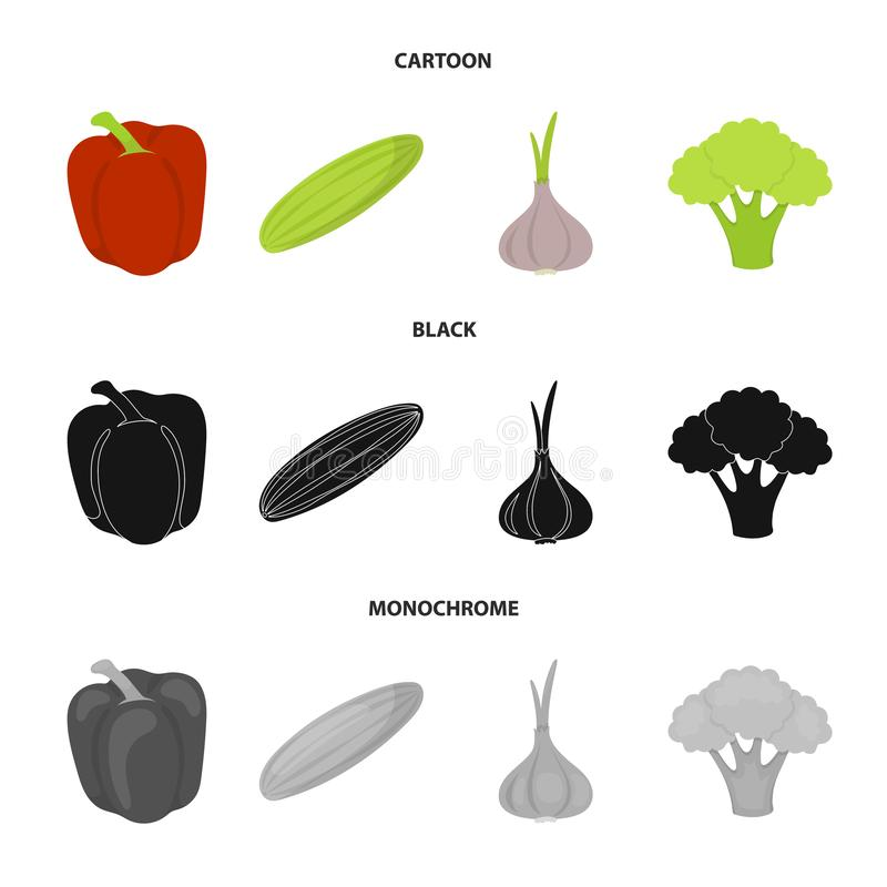 Red sweet pepper, green cucumber, garlic, cabbage. Vegetables set collection icons in cartoon,black,monochrome style. Vector symbol stock illustration royalty free illustration