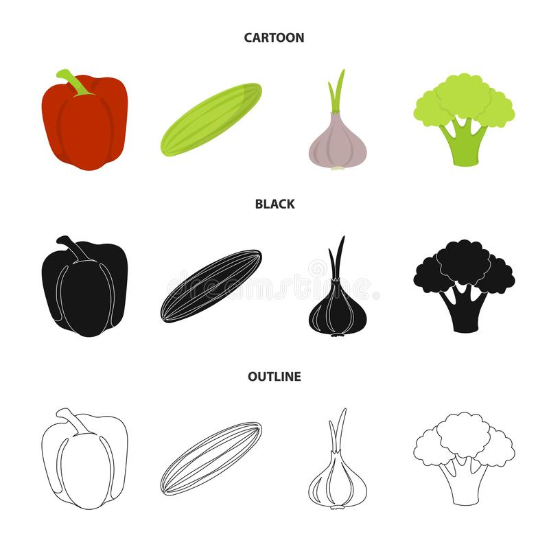 Red sweet pepper, green cucumber, garlic, cabbage. Vegetables set collection icons in cartoon,black,outline style vector. Symbol stock illustration stock illustration