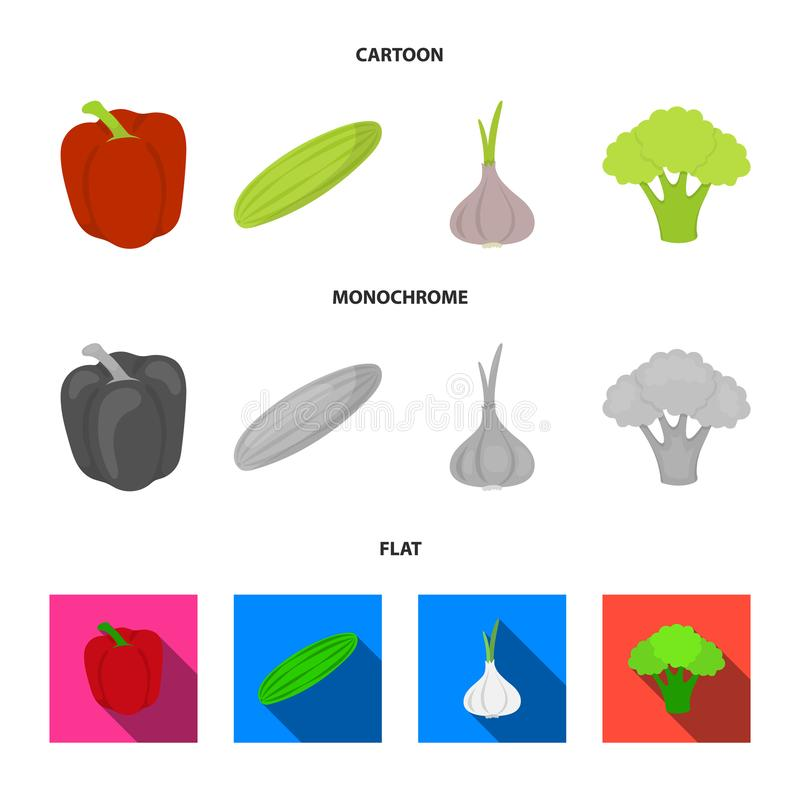 Red sweet pepper, green cucumber, garlic, cabbage. Vegetables set collection icons in cartoon,flat,monochrome style. Vector symbol stock illustration vector illustration