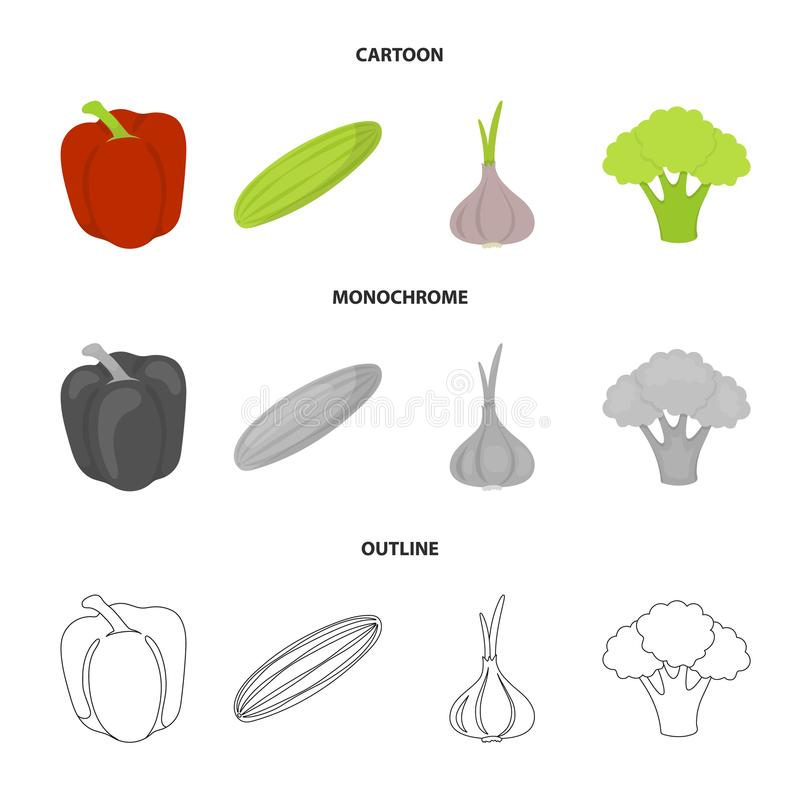 Red sweet pepper, green cucumber, garlic, cabbage. Vegetables set collection icons in cartoon,outline,monochrome style. Vector symbol stock illustration vector illustration