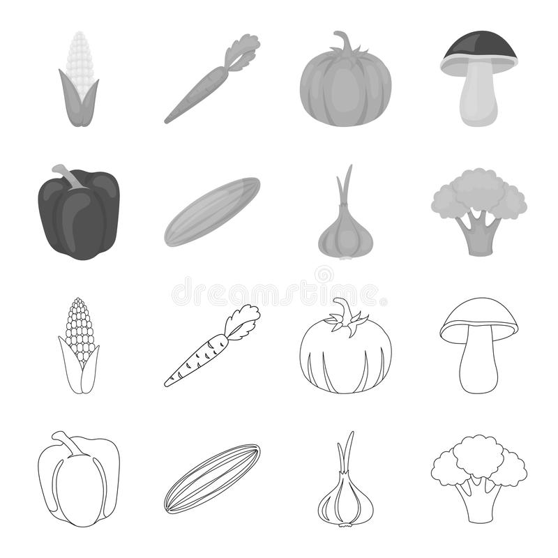 Red sweet pepper, green cucumber, garlic, cabbage. Vegetables set collection icons in outline,monochrome style vector. Symbol stock illustration royalty free illustration