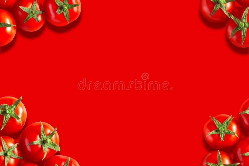 Red sweet tomato  template frame royalty free stock image