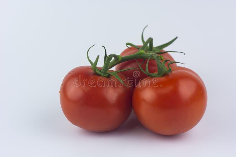 Red sweet tomatos. stock photo