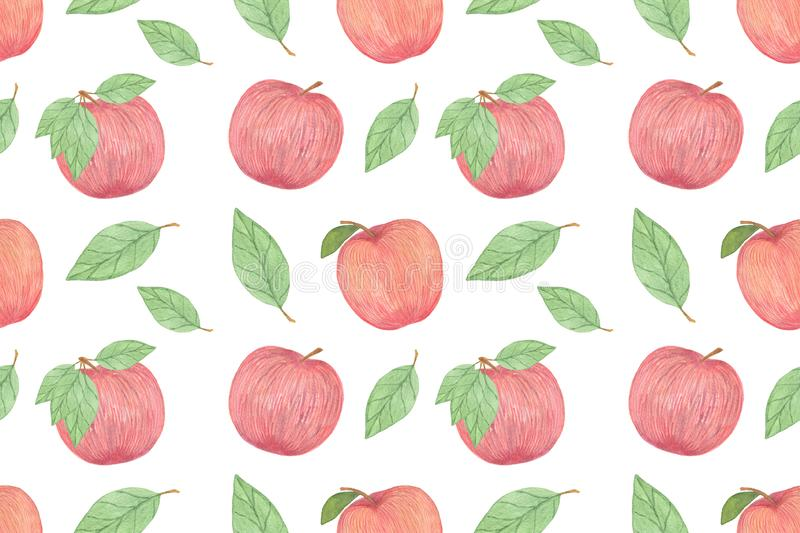 Red tasty apples seamless pattern, watercolor hand drawn illustration on the white background vector illustration
