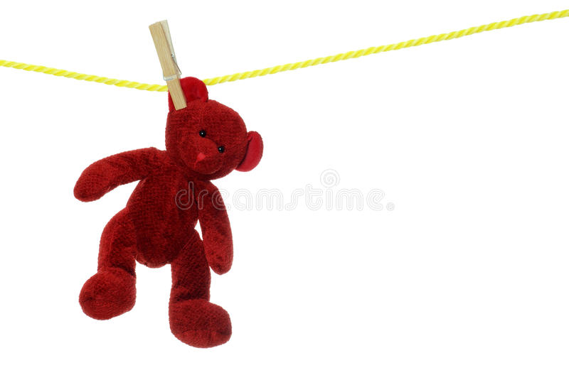 Red teddy bear on clothesline. Isolated Red teddy bear on clothesline with white background stock photos