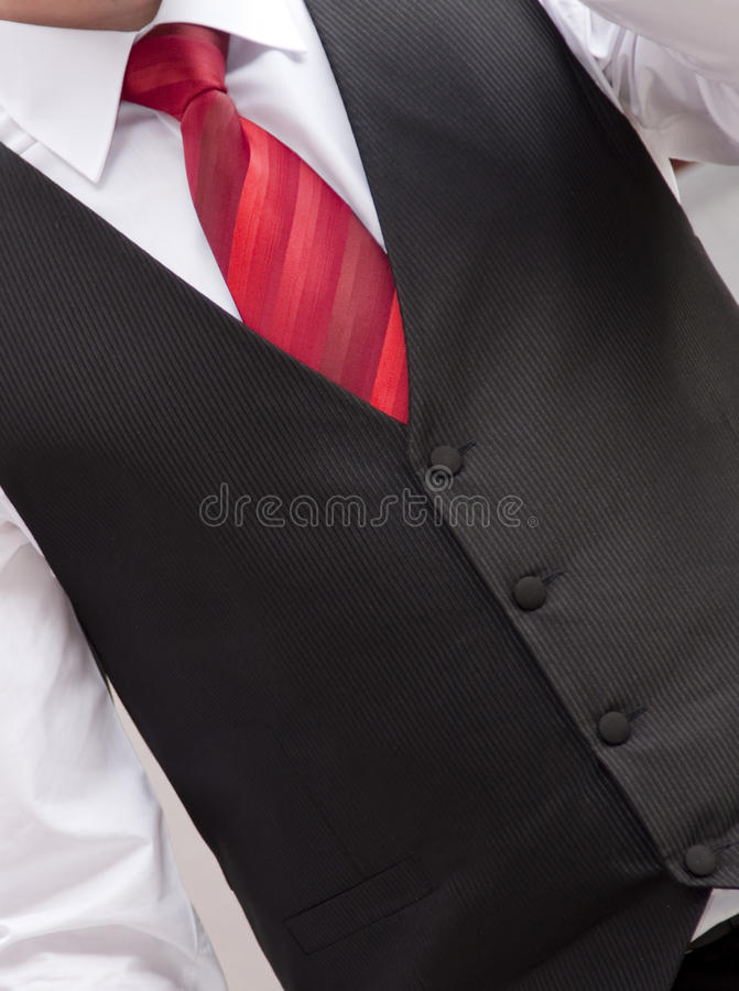 Free Red Tie Royalty Free Stock Image - 14424426