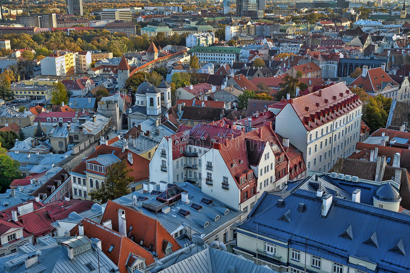 Red tile roofs in Tallinn stock photography