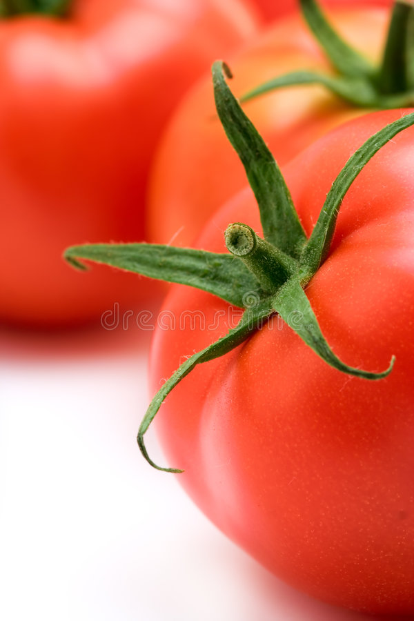 Free Red Tomato Stock Images - 1444104