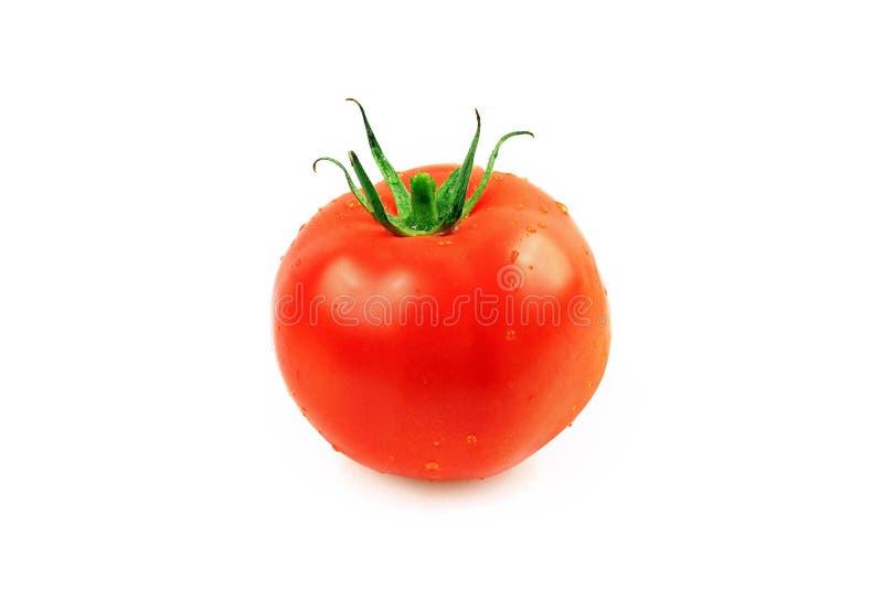 Download Red Tomato stock image. Image of life, biology, ingredients - 17631553