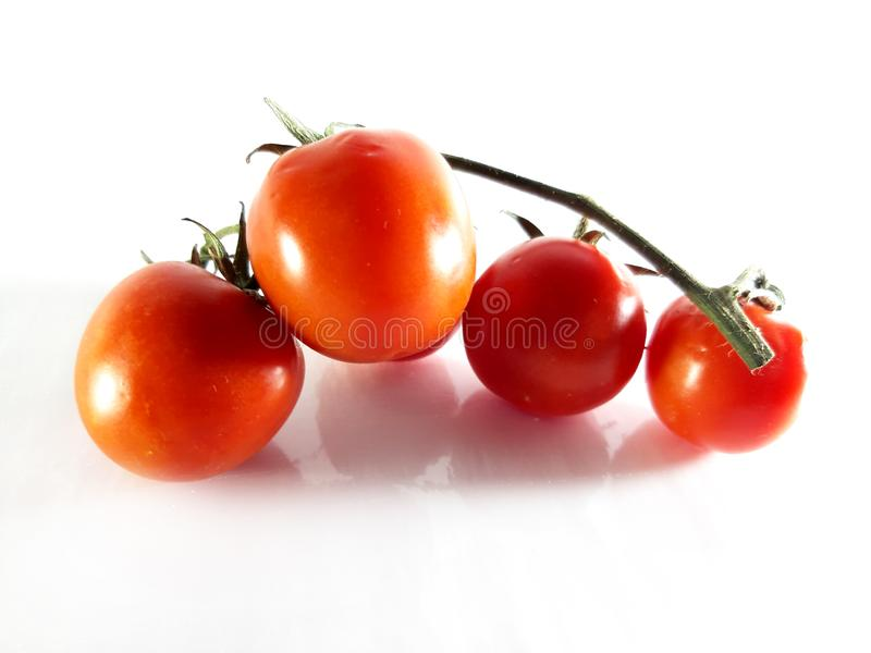 Red tomato, branch. Health food. Delicious and vitamin. Dieting and vegetarian royalty free stock photo