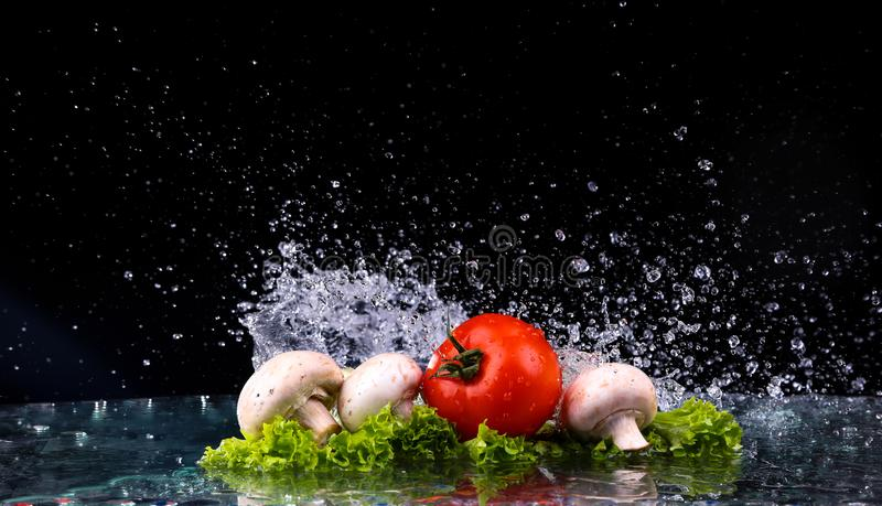 Red tomato cherry, mushrooms and green fresh salad with water drop splash royalty free stock photos