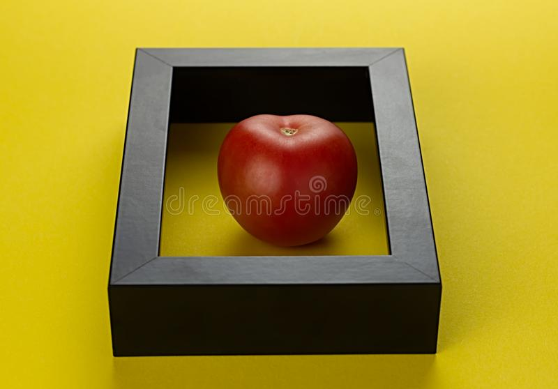 A red tomato inside a frame stock photography