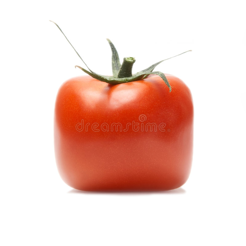 Free Red Tomato Isolated Royalty Free Stock Photography - 4129527