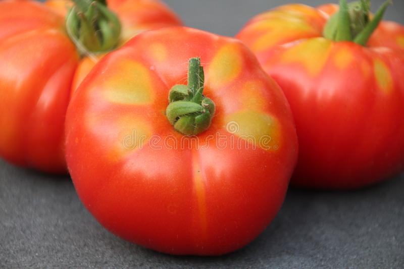 Red tomato with little green after harvesting them from kitchen garden in the Netherlands royalty free stock images