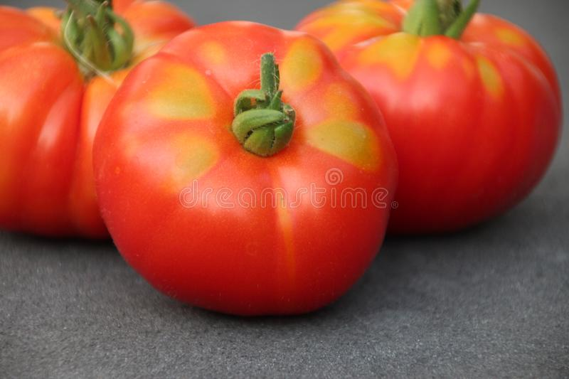 Red tomato with little green after harvesting them from kitchen garden in the Netherlands royalty free stock photos