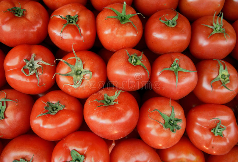 Red tomatoes. A top close up view of red tomatoes stock images