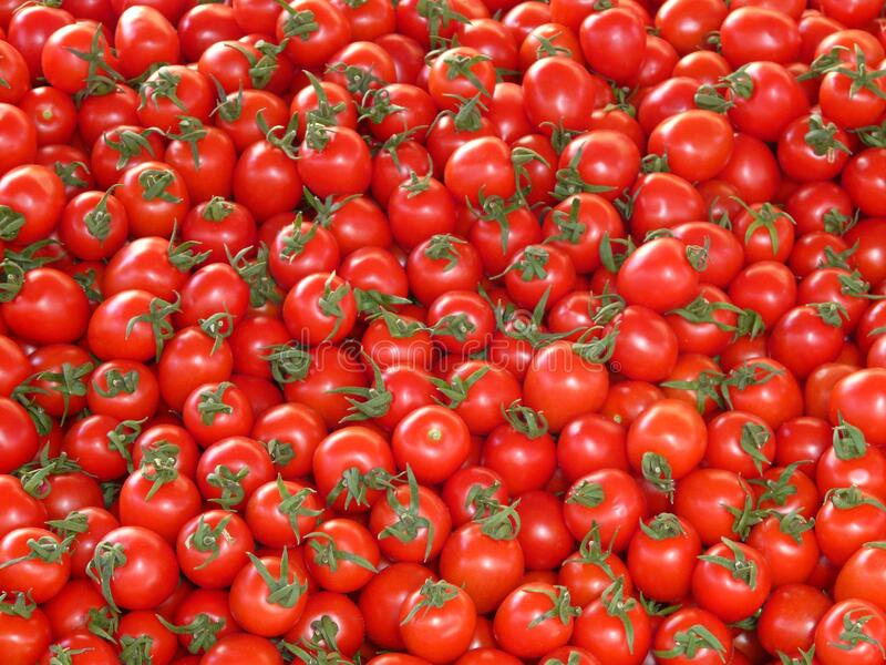 Red Tomatoes Free Public Domain Cc0 Image