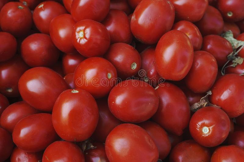 Red tomatoes background. Group of tomatoes.  stock photography