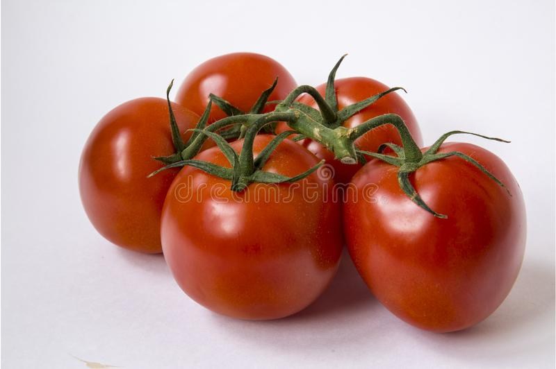 Red tomatoes. Bunch of red tomatoes on a white background royalty free stock photos