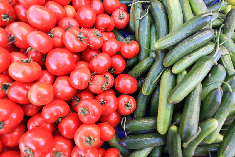 Red tomatoes and green cucumber. The fresh of red tomatoes and green cucumber stock photos
