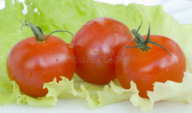 Download Red Tomatoes On Green Leaf Of Cabbage Stock Photo - Image: 31703982
