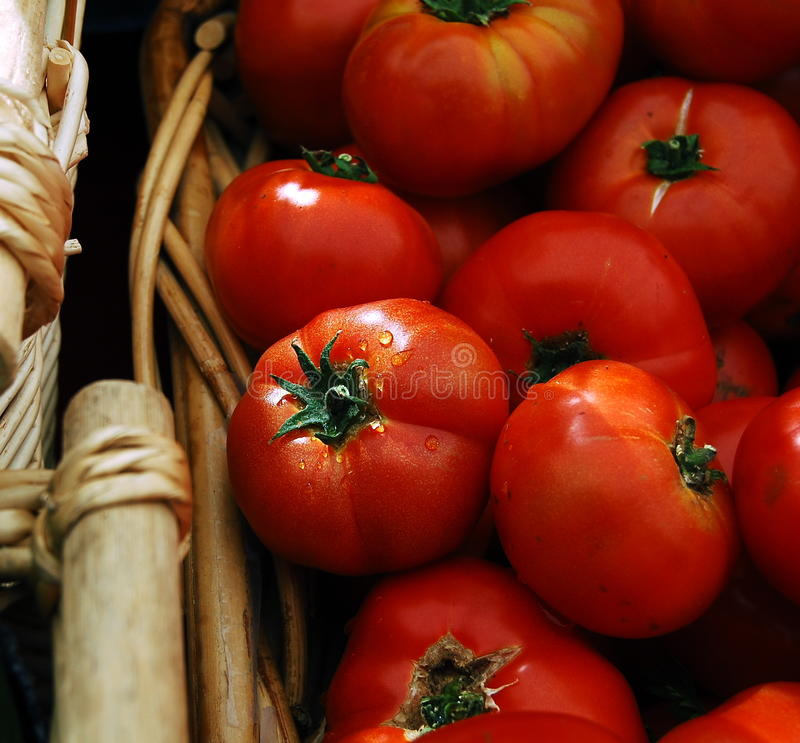 Free Red Tomatoes In Basket Stock Photography - 15295182