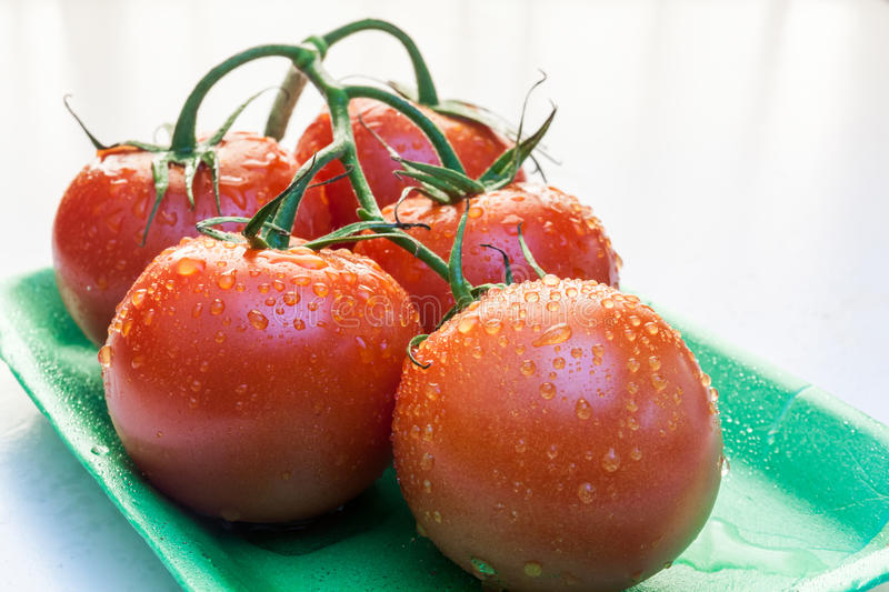 Red tomatoes in a plate. Near window with natural light stock photos