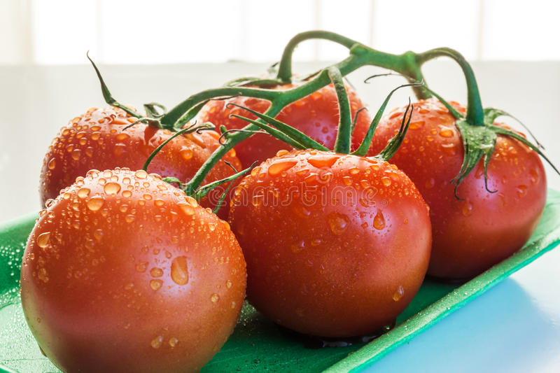 Red tomatoes in a plate. Near window with natural light royalty free stock photography