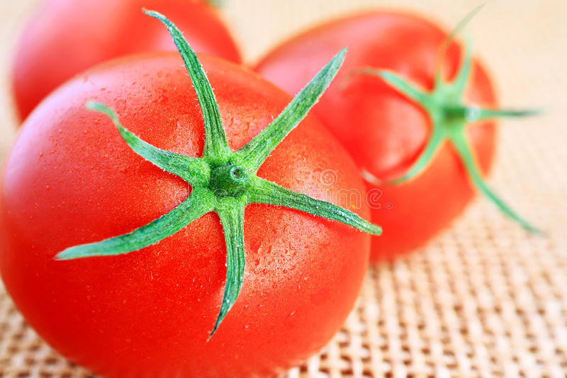 Download Red tomatoes. stock photo. Image of macro, vitamins, health - 33280524