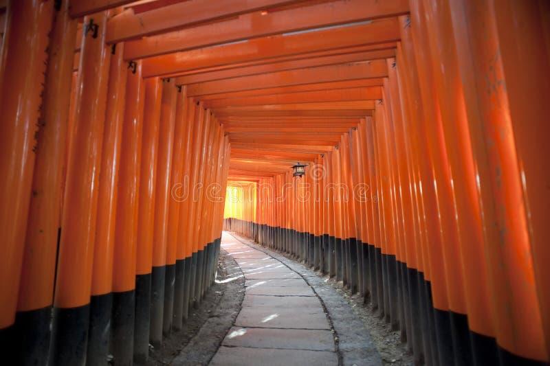 Download Red Torii Gates Japan stock image. Image of orange, future - 26371561