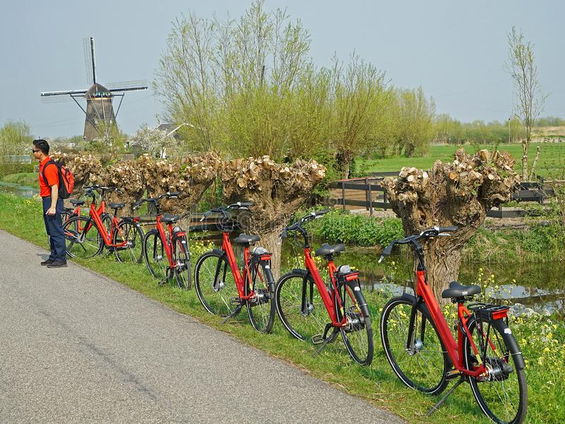 Red tourist bikes along the path at the windmills of Kinderdijk. In The Netherlands royalty free stock image