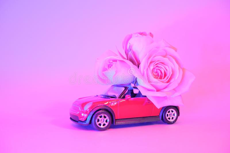 Red toy car delivering bouquet of pink rose flowers on trendy color neon background. Place for text. February 14 card royalty free stock images