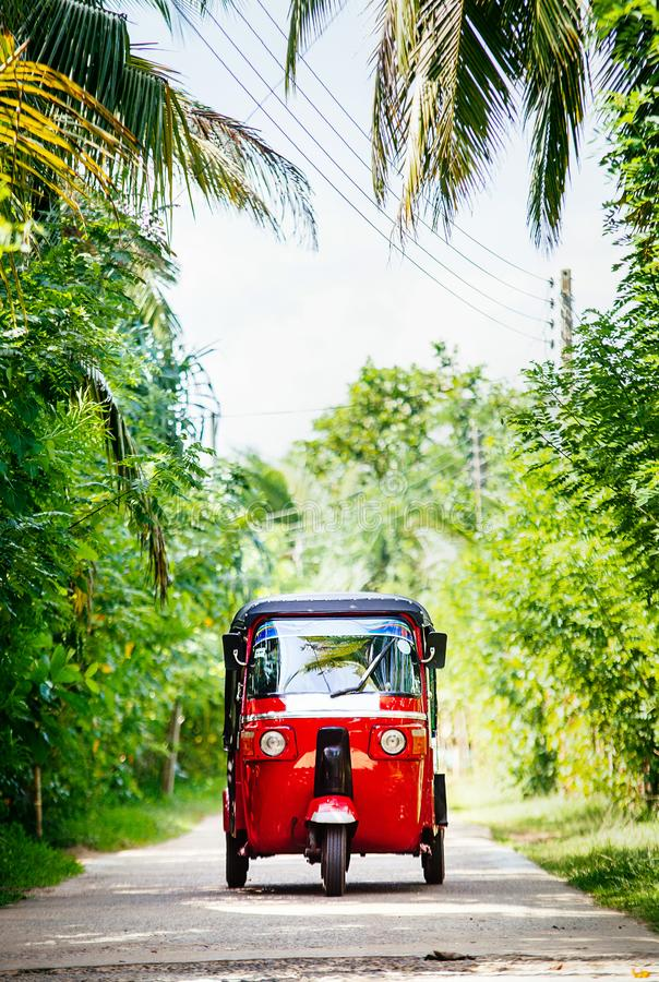 Red tuk-tuk under the palm trees on the country road royalty free stock photos