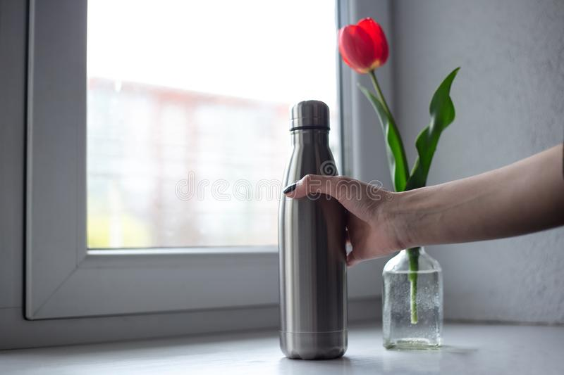 Red tulip with steel bottle on the background of the window royalty free stock photos