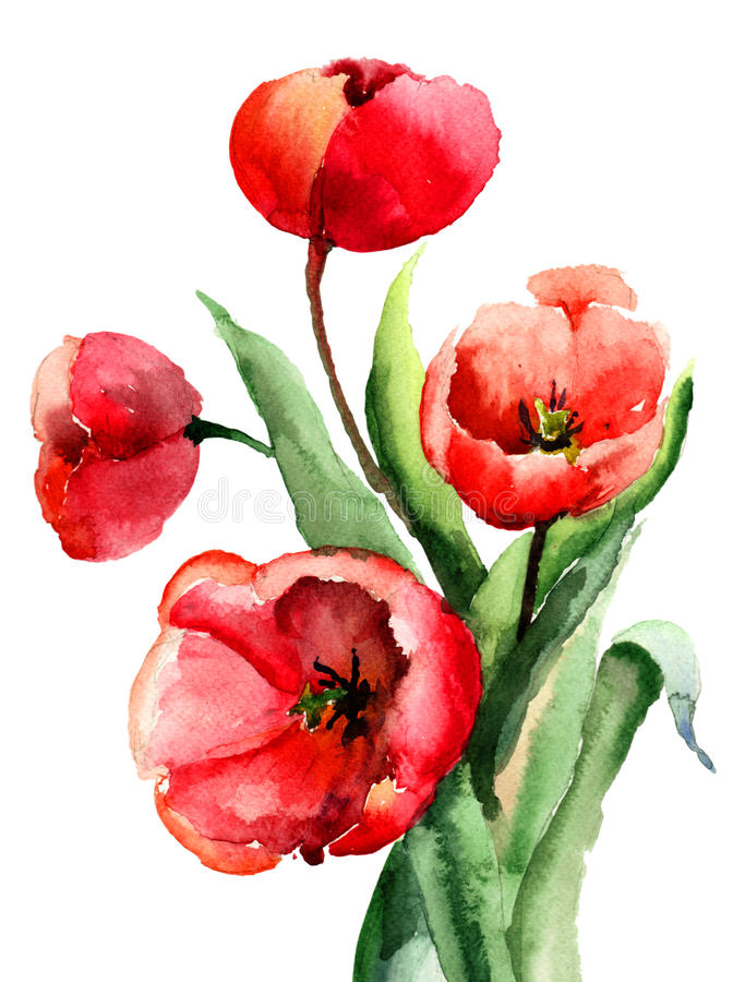 Download Red Tulips flowers stock illustration. Image of revival - 29419353