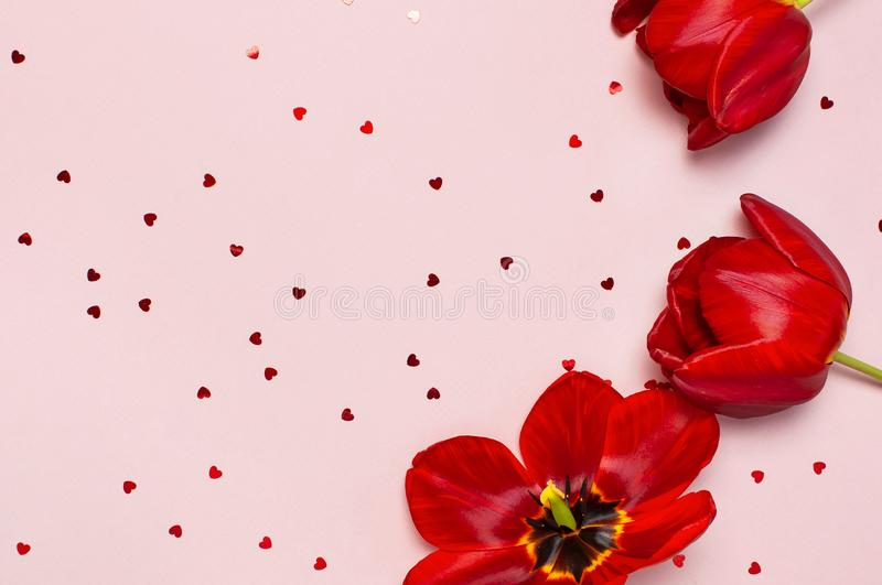 Red tulips and heart shaped confetti on pastel pink background top view Flat lay copy space. Mother`s Day, Valentines Day,. Birthday, holiday background. Spring royalty free stock images