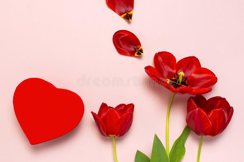 Red tulips, red heart shaped gift box on pastel pink background top view Flat lay copy space. Mother`s Day, Valentines Day,. Birthday, holiday background royalty free stock images
