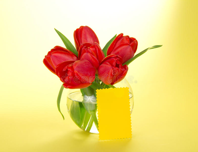 Red tulips in round transparent vase and card royalty free stock photo