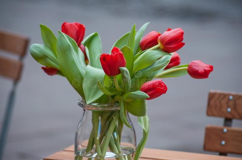 red tulips on table in restaurant terrace in the street royalty free stock photo