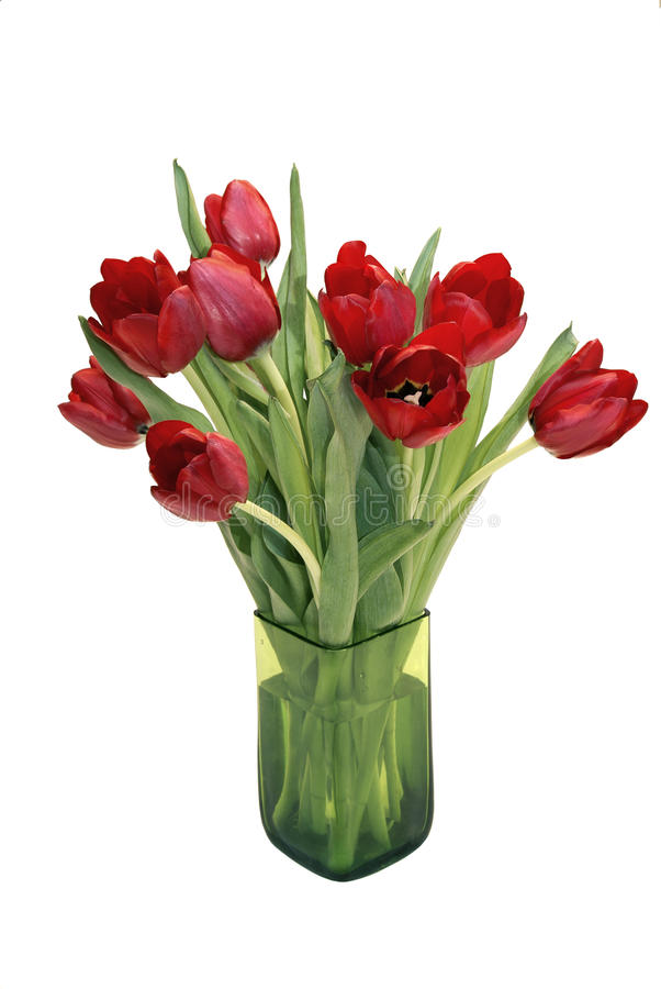 Red Tulips in a vase royalty free stock images