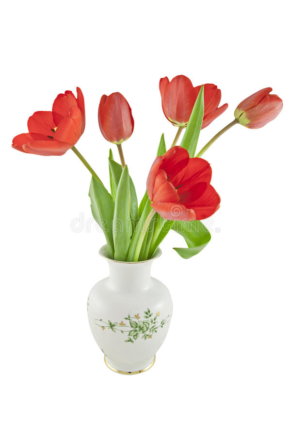 Download Red tulips in a vase stock photo. Image of flowers, blossom - 24634804