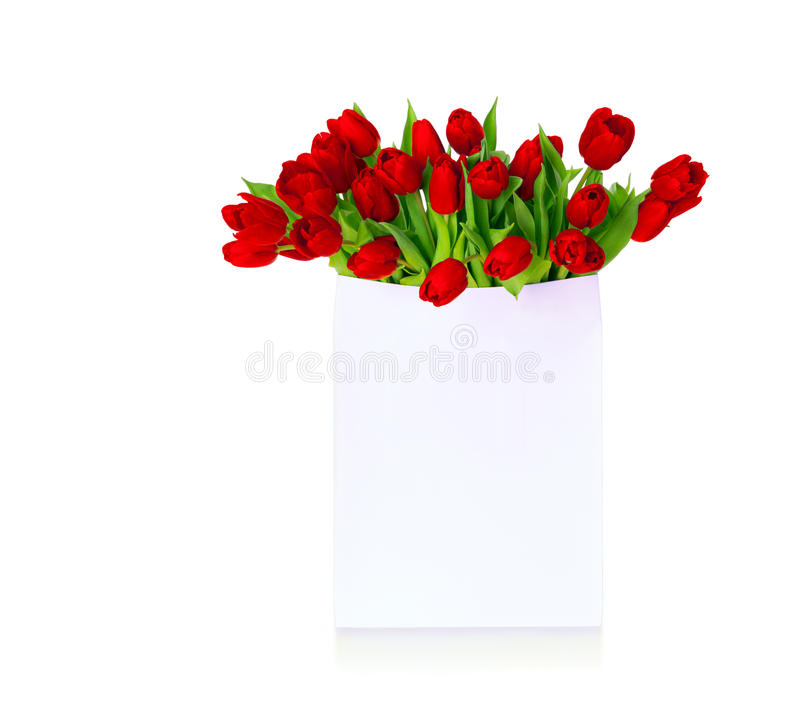 Red tulips in white shopping bag with text Sale. stock photos