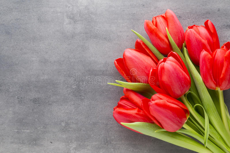 Red tulips on a wooden background royalty free stock photography
