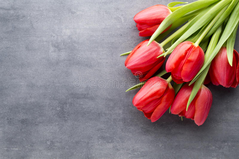 Red tulips on a wooden background royalty free stock photos