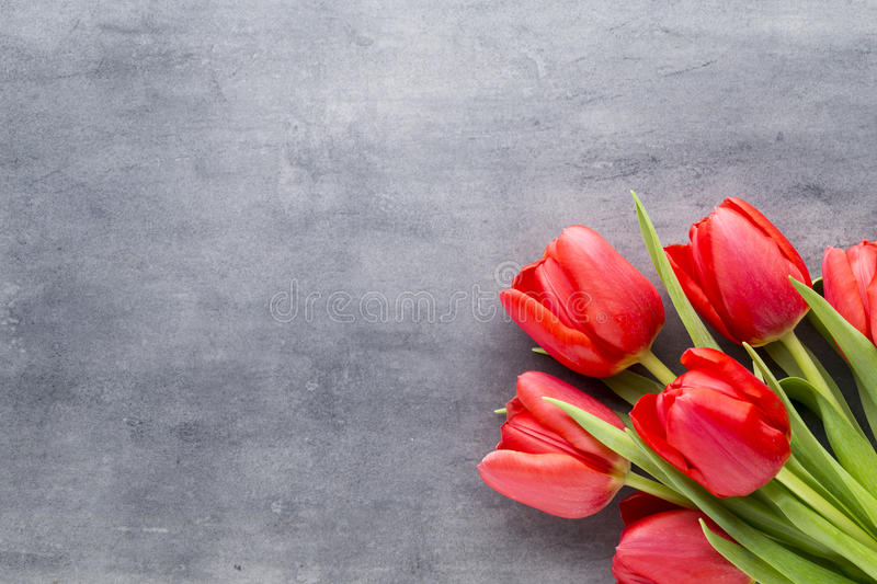 Red tulips on a wooden background. stock image