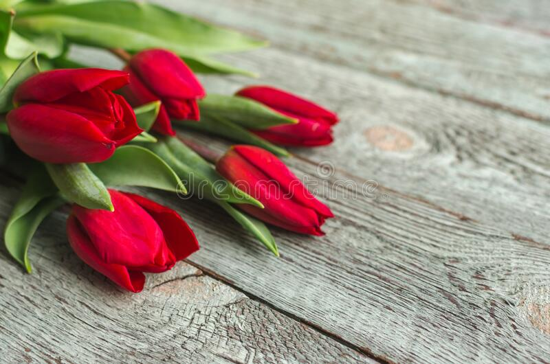 Red tulips on wooden background. Valentine`s day concept. 8 march. Mother day concept. Top view royalty free stock photography