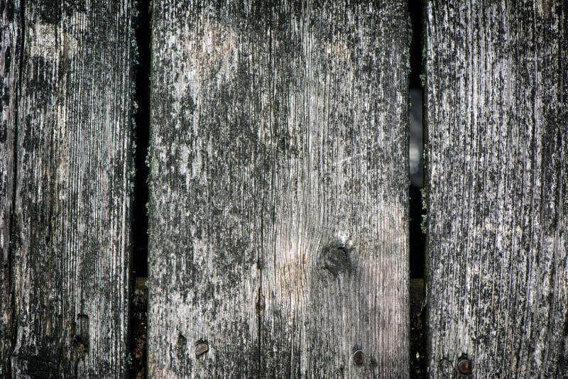 Red ut däckbräden arkivfoto