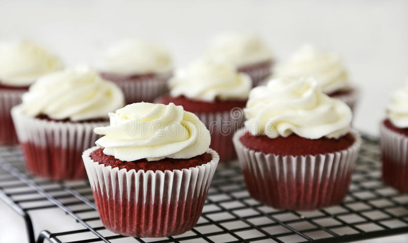 Download Red velvet cupcakes stock image. Image of pastries, cake - 28736799